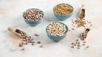protéines pour les végétariens