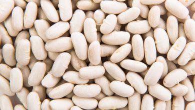 les haricots blancs pour maigrir